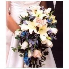 Wedding Model