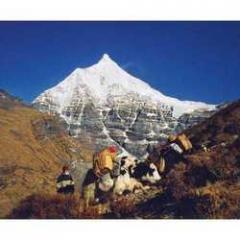 Bhutan Trip (10 Nights / 11 Days)