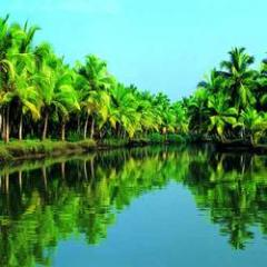 Munnar - Thekkady - Kumarakam - Alleppey