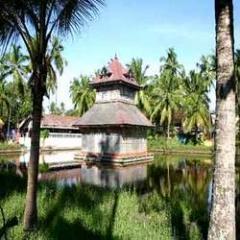 Cochin-Guruvayoor-Wayanad-Munnar-Thekkady-Kumarakam-Kovalam-Kanyakumari