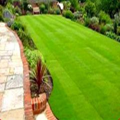 Garden Maintainance Services