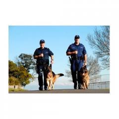 Guard Dog Services (K-9 Units)