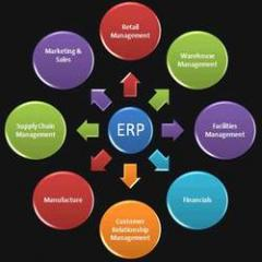 Customized Enterprise Resource Planning (ERP)