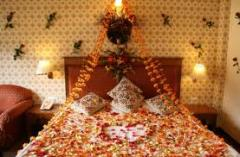 Honeymoon tours to Kulu-manali
