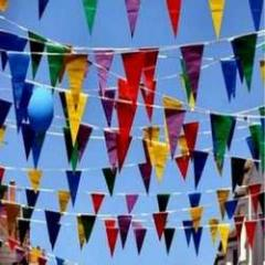 Bunting Printing Services