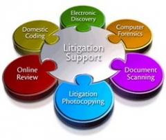Litigation Support