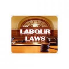 Labour Law Consultancy