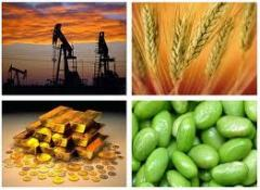 Commodity Market Trading