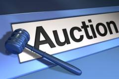 Own Internet Auction