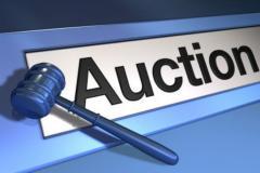 Own Internet Auction