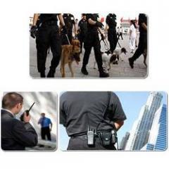 V.I.P. Protection Services
