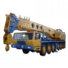Hydraulic Cranes Rental Service