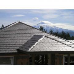 Metal Roof Top