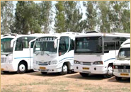 Buses/ Coaches and cars rental
