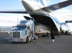 Freight Air Transport