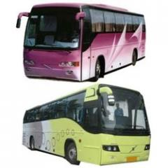 Bus Travel Services
