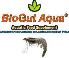 BioGut Aqua