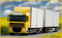 Transport Forwarding