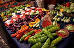 Vegetable Testing