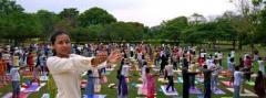 Yoga Training Course