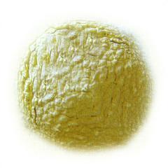 Guar Gum Powder Exporter India