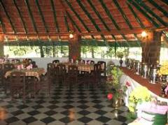 In Bandipur Jungle Resorts Area - So Good