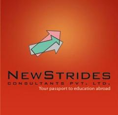 NewStrides Consulting Pvt. Ltd