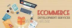 ECommerce Development in India