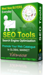 SEO - Search Engine Optimization, SEO Company, Business Promotion, Internet Promotion, Web Promotion