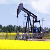 Oil & Gas - Postgraduate Programs